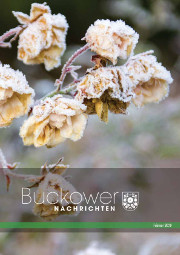 Buckower Nachrichten Februar 2020