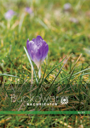 Buckower Nachrichten März 2019