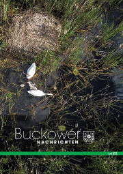 Buckower Nachrichten Juni 2020