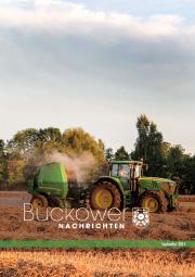 Buckower Nachrichten September 2017