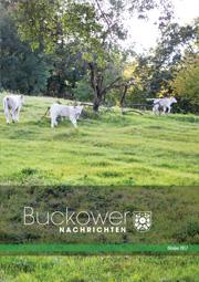 Buckower Nachrichten Oktober 2017